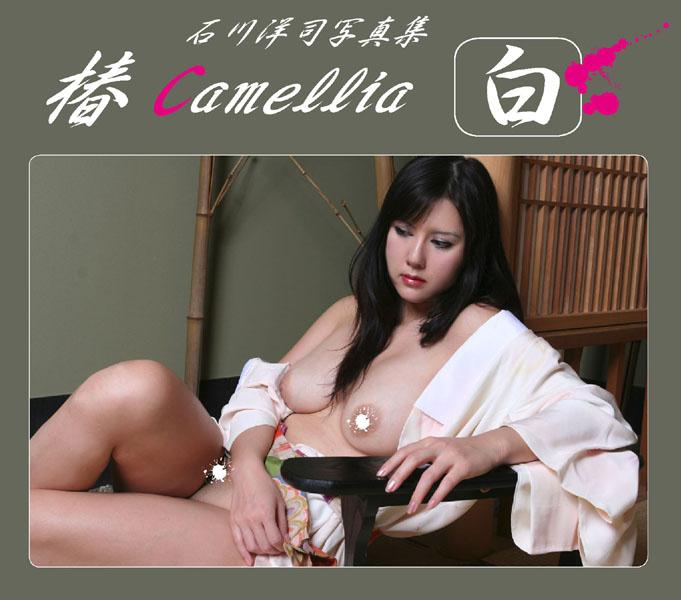 椿camellia 白