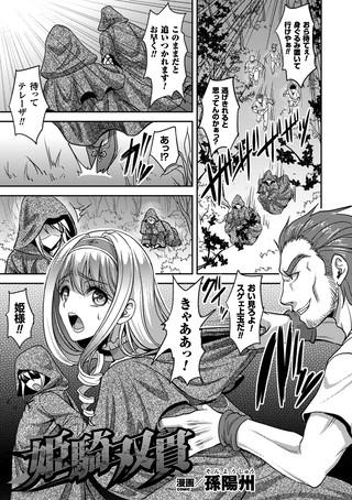 姫騎双貫【単話】