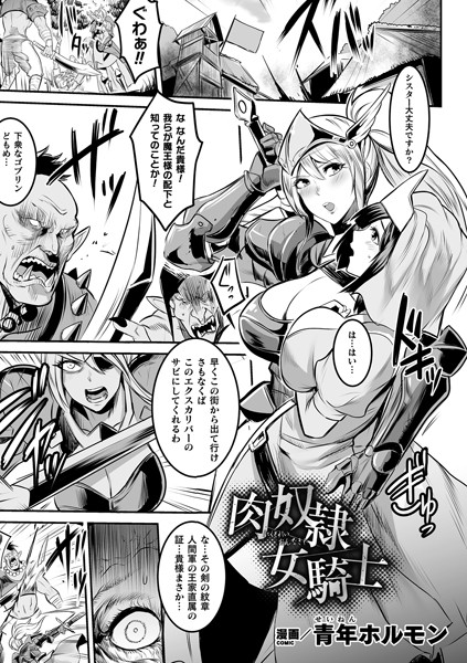 肉奴隷女騎士(単話)