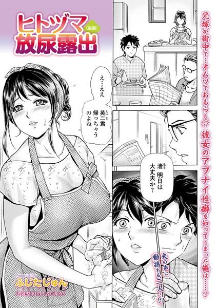 [熟女]「ヒトヅマ露出(単話)」(ふじたじゅん)  同人誌