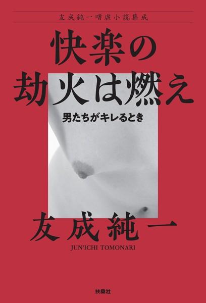 友成純一嗜虐小説集成
