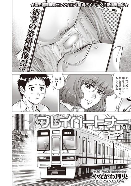 プレイパートナー(単話)