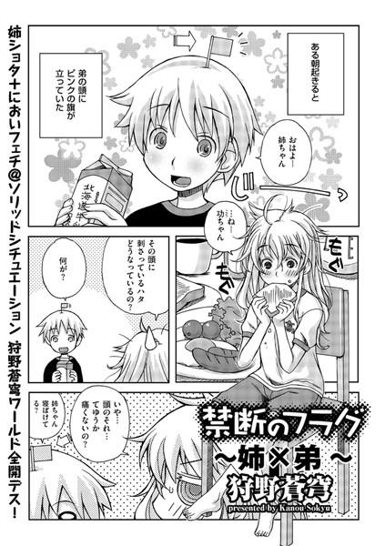 禁断のフラグ〜姉×弟〜(1)