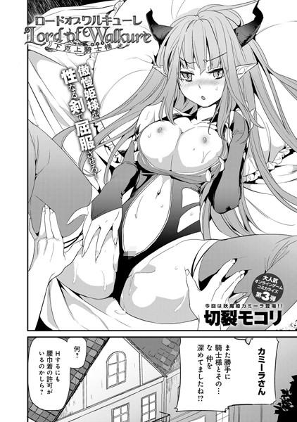 ロードオブワルキューレ 〜下克上騎士様〜