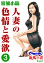 【官能小説】人妻の色情と愛欲 3 Digital新風小説Light