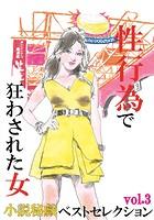 性行為で狂わされた女 『小説秘戯』ベストセレクション b447aitfn00444のパッケージ画像