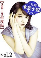 これが官能小説だっ!2013年度版 vol.2