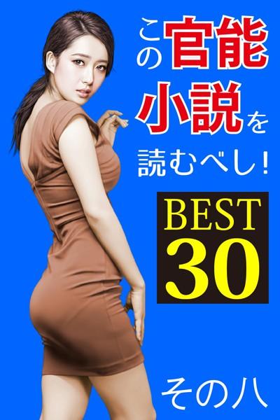 この官能小説を読むべし! BEST30 その八