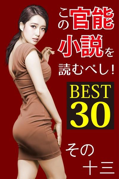 この官能小説を読むべし! BEST30 その十三