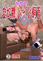 女教師 肉奴●メイド飼育 b750egrzr05523のパッケージ画像
