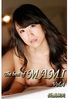 The best of MAMI Vol.4 / 長瀬麻美