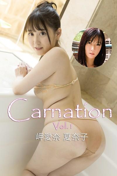 Carnation Vol.1 / 岬愛奈 夏奈子