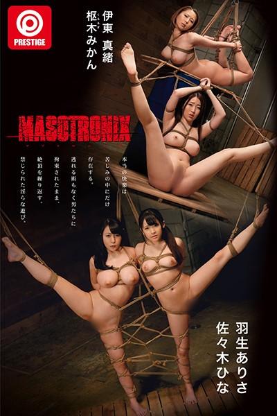 .MASOTRONIX