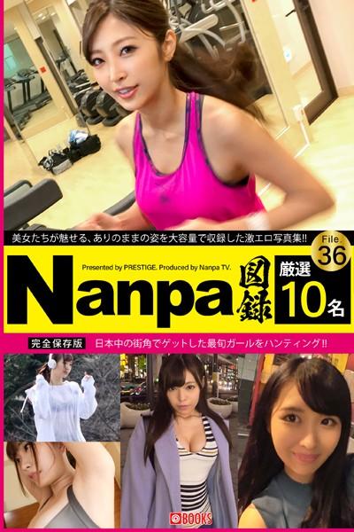 Nanpa図録 File.36
