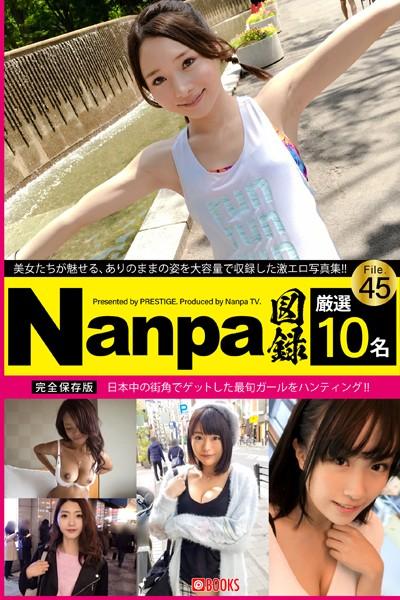 Nanpa図録 File.45