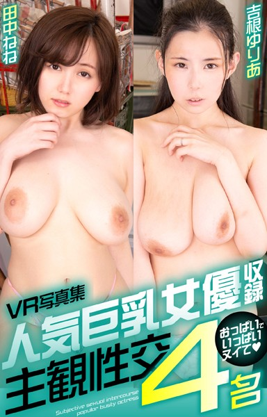 VR写真集 人気巨乳女優収録 主観性交4名