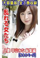 大容量版 全3巻収録 乱れる女たち 人妻 平山みな 総集編530ページ k769aneme00636のパッケージ画像
