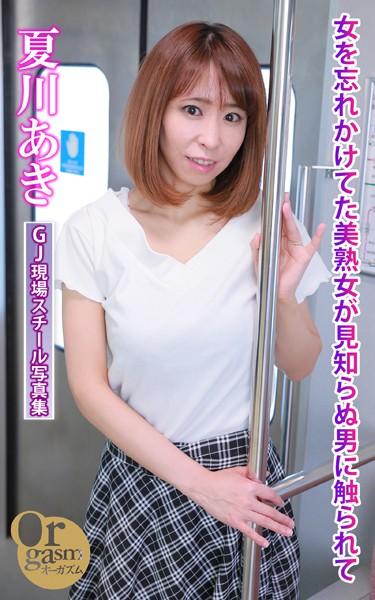 グラフィティジャパン現場スチール写真集 女を忘れかけてた美熟女が見知らぬ男に触られて 夏川あき