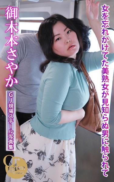 グラフィティジャパン現場スチール写真集 女を忘れかけてた美熟女が見知らぬ男に触られて 御木本さやか