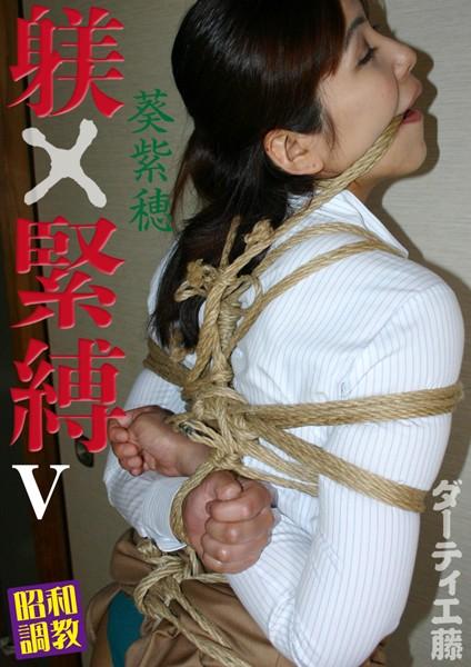 躾×緊縛 V 昭和調教 葵紫穂