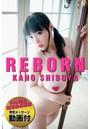 REBORN KAHO SHIBUYA【オリジナルTシャツ&特別メッセージ動画付】